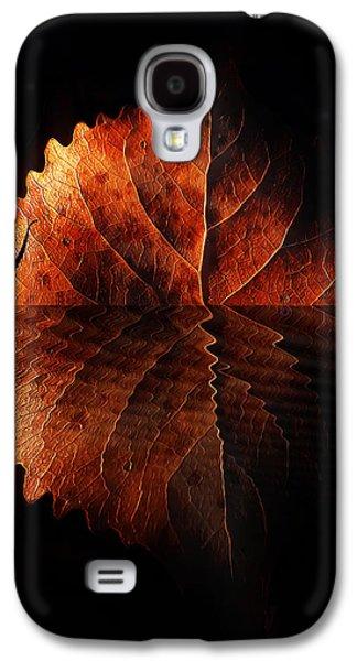 Autumn Leaf On Water Galaxy S4 Cases - Last Light On Water Galaxy S4 Case by Terril Heilman