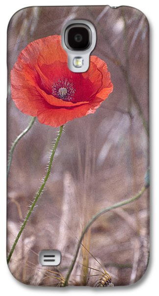 Nature Abstracts Galaxy S4 Cases - Last Poppy Galaxy S4 Case by Guido Montanes Castillo