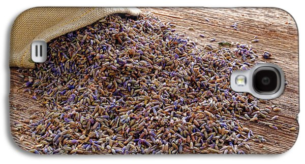 Dried Photographs Galaxy S4 Cases - Lavender and Burlap Galaxy S4 Case by Olivier Le Queinec