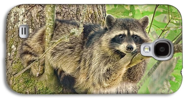 Lazy Day Raccoon Galaxy S4 Case by Jennie Marie Schell