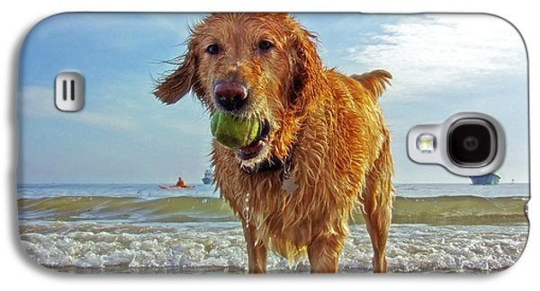 Dog Playing Ball Galaxy S4 Cases - Lazy Summer Days at the Beach Galaxy S4 Case by Nishanth Gopinathan