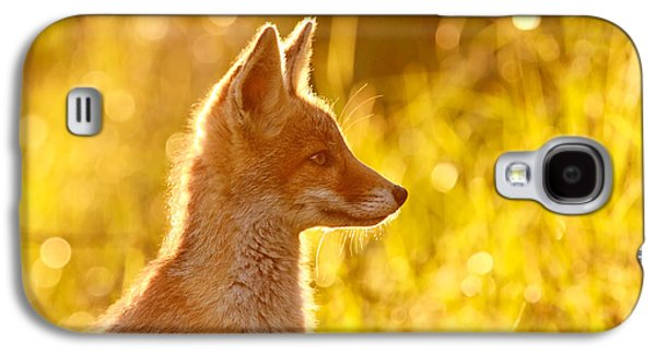 Red Photographs Galaxy S4 Cases - Le Ptit Renard Galaxy S4 Case by Roeselien Raimond