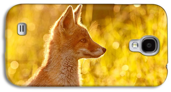 Red Galaxy S4 Cases - Le Ptit Renard Galaxy S4 Case by Roeselien Raimond
