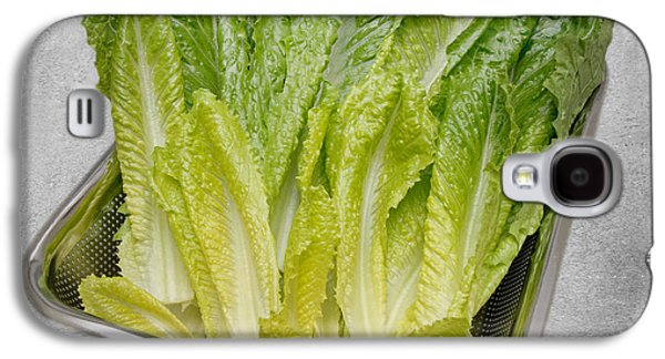 Romaine Galaxy S4 Cases - Leaf Lettuce Galaxy S4 Case by Andee Design
