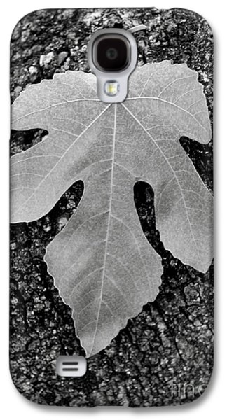 Uc Davis Galaxy S4 Cases - Leaf on Bark Galaxy S4 Case by Andrew Brooks