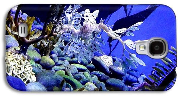 Leafy Sea Dragon Galaxy S4 Cases - Leafy Sea Dragon Galaxy S4 Case by Kelly Mills