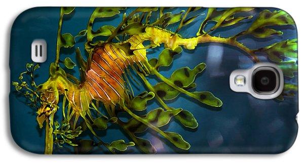 Leafy Sea Dragon Galaxy S4 Cases - Leafy Sea Dragon Galaxy S4 Case by Artist and Photographer Laura Wrede