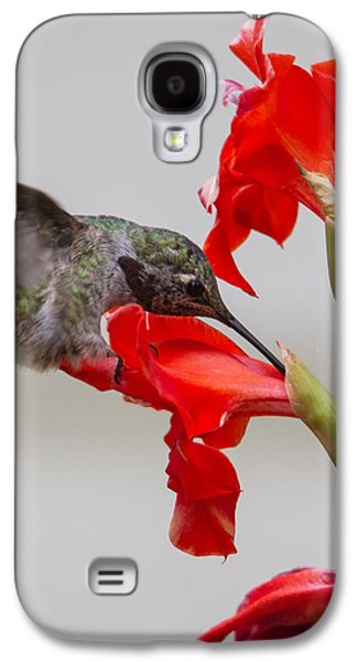 Gladiolas Galaxy S4 Cases - Learning About Flowers Galaxy S4 Case by Angie Vogel