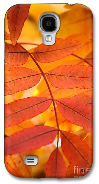 Leaves Of Gold Galaxy S4 Case by Deb Halloran