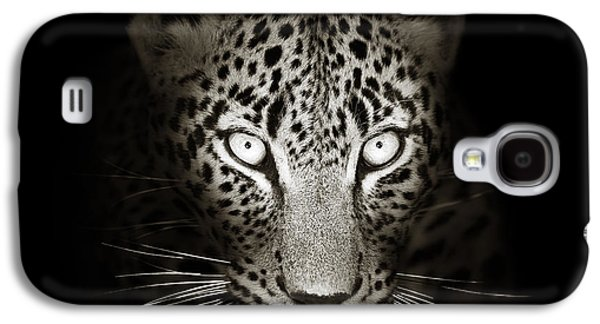 Intense Galaxy S4 Cases - Leopard portrait in the dark Galaxy S4 Case by Johan Swanepoel