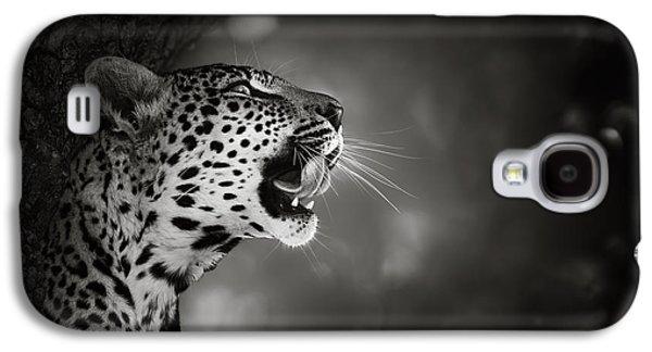 Display Galaxy S4 Cases - Leopard portrait Galaxy S4 Case by Johan Swanepoel