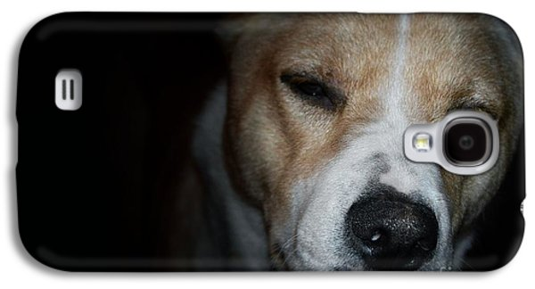 Puppies Pyrography Galaxy S4 Cases - Let sleeping dogs lie. Galaxy S4 Case by Tim Kravel