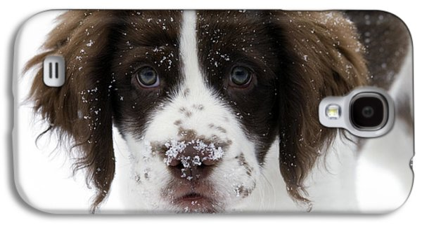 Puppies Galaxy S4 Cases - Lets Play Galaxy S4 Case by Mike  Dawson