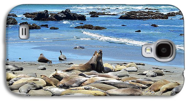 Coast Hwy Ca Galaxy S4 Cases - Life at the Rookery Galaxy S4 Case by Lynn Bauer