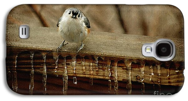 Tufted Titmouse Galaxy S4 Cases - Life Can Be Tough Galaxy S4 Case by Lois Bryan