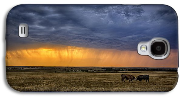 Prairie Galaxy S4 Cases - Lifeblood Galaxy S4 Case by Thomas Zimmerman