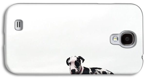 Dog Trots Galaxy S4 Cases - Like a puppy on a string Galaxy S4 Case by Richard Lawrence
