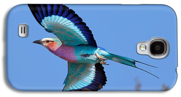 Lilac-breasted Roller In Flight Galaxy S4 Case by Johan Swanepoel