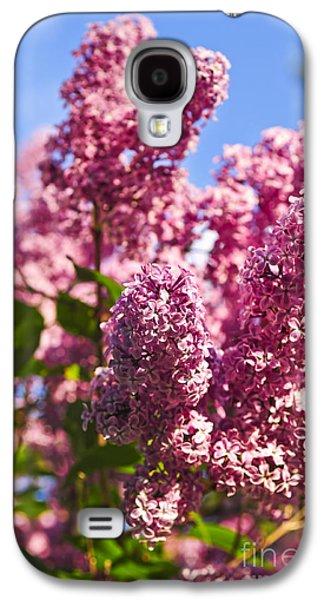 Lilacs Galaxy S4 Cases - Lilacs Galaxy S4 Case by Elena Elisseeva