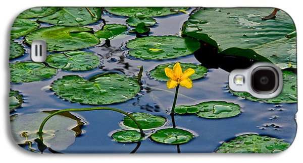 Lilly Pad Galaxy S4 Cases - Lilly Pad Pond Galaxy S4 Case by Frozen in Time Fine Art Photography