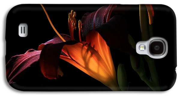 Botanical Galaxy S4 Cases - Lily Ambiance Galaxy S4 Case by Donna Kennedy