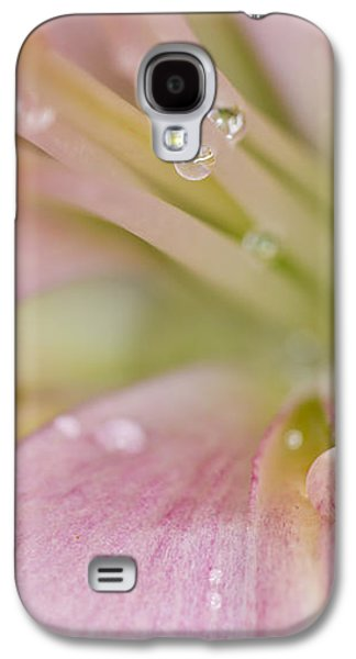 Stamen Digital Galaxy S4 Cases - Lily and Waterdrops Galaxy S4 Case by Melanie Viola