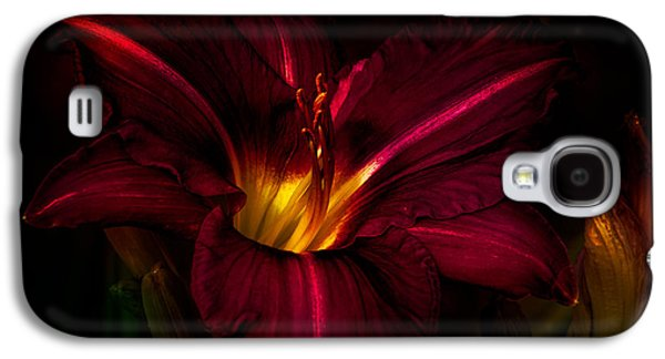 Autumn Art Galaxy S4 Cases - Lily Number Nine Galaxy S4 Case by Bob Orsillo