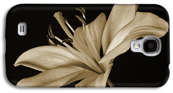 Indiana Art Galaxy S4 Cases - Lily Galaxy S4 Case by Sandy Keeton