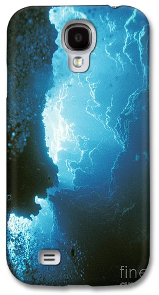 Sink Hole Galaxy S4 Cases - Limestone Sinkhole Galaxy S4 Case by ANT Photo Library
