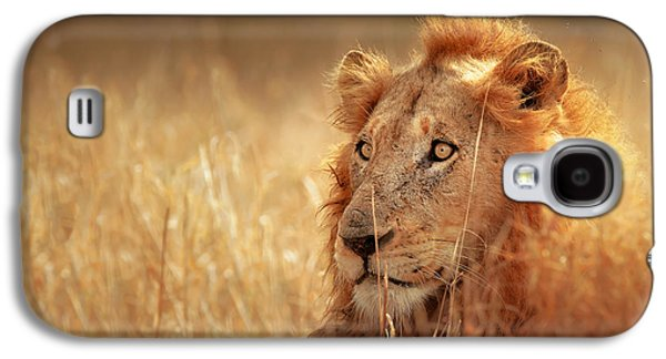 Intense Galaxy S4 Cases - Lion in grass Galaxy S4 Case by Johan Swanepoel