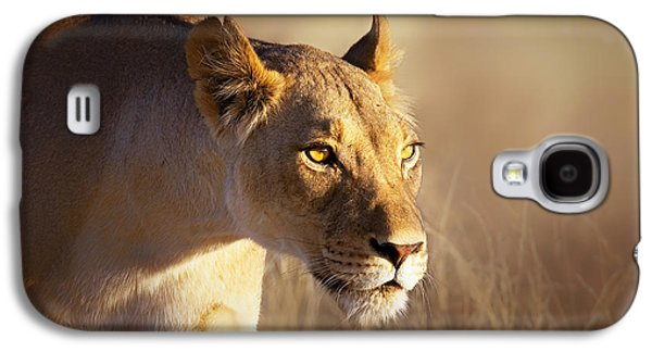 Lioness Galaxy S4 Cases - Lioness portrait-1 Galaxy S4 Case by Johan Swanepoel