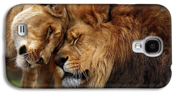 Animals Love Galaxy S4 Cases - Lions in Love Galaxy S4 Case by Emmanuel Panagiotakis