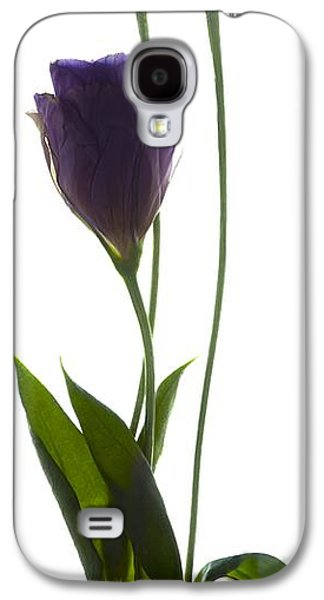 Botanical Galaxy S4 Cases - Lisianthus Duo Galaxy S4 Case by Julia McLemore