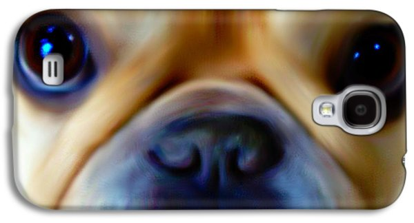 Puppy Digital Galaxy S4 Cases - Little Frenchie Face Galaxy S4 Case by Barbara Chichester