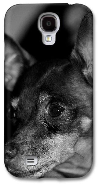 Dogs Pyrography Galaxy S4 Cases - Little great friend Galaxy S4 Case by Joel De la torre