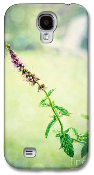 Original Photographs Galaxy S4 Cases - Little Purple Flower Galaxy S4 Case by Colleen Kammerer