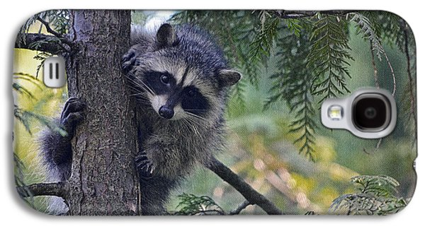 Raccoon Digital Art Galaxy S4 Cases - Little Raccoon Galaxy S4 Case by Maria Angelica Maira