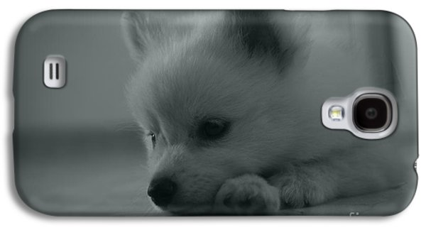 Puppies Pyrography Galaxy S4 Cases - Little sad dog Galaxy S4 Case by Victor Georgiev