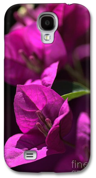 Living With Joy Galaxy S4 Cases - Living With Bougainvillea Galaxy S4 Case by Joy Watson