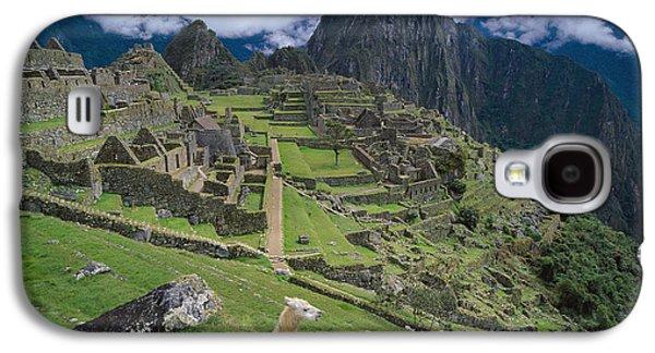 Llama At Machu Picchus Ancient Ruins Galaxy S4 Case by Chris Caldicott