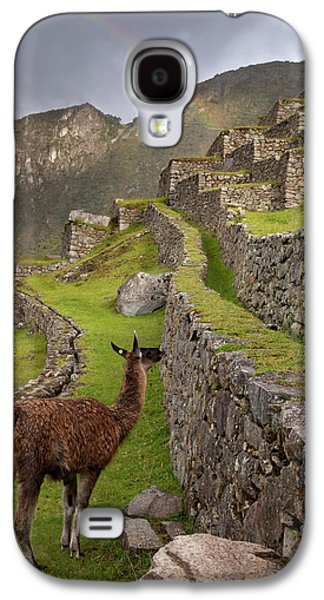 Llama Stands On Agricultural Terraces Galaxy S4 Case by Jaynes Gallery