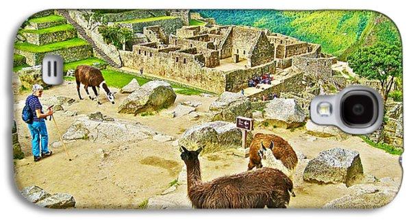 Llama Digital Galaxy S4 Cases - Llamas at Machu Picchu-Peru  Galaxy S4 Case by Ruth Hager