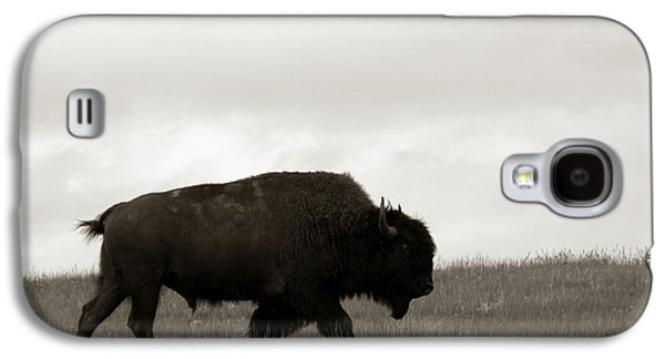 Bison Galaxy S4 Cases - Lone Bison Galaxy S4 Case by Olivier Le Queinec