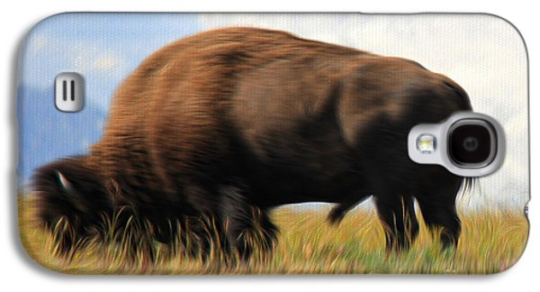 Bison Digital Art Galaxy S4 Cases - Lone Bison Galaxy S4 Case by Vickie Emms