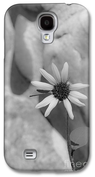 Landscapes Photographs Galaxy S4 Cases - Lone Flower on the Rocks Galaxy S4 Case by Debra Martz
