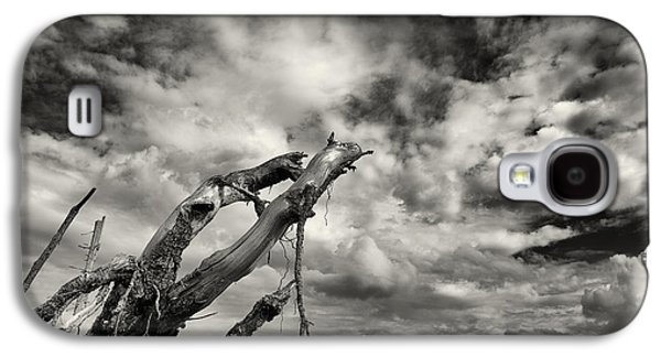 Tree Roots Photographs Galaxy S4 Cases - Lonely Tree Roots Reaching For The Sky Galaxy S4 Case by Christian Lagereek