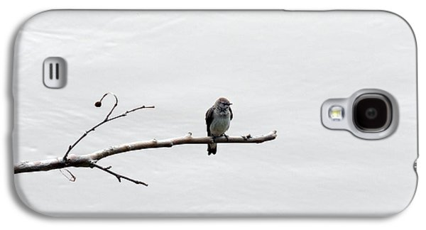 Photos Of Birds Galaxy S4 Cases - Lonesome Galaxy S4 Case by Skip Willits