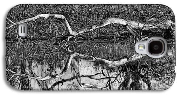 Trees Reflecting In Creek Galaxy S4 Cases - Long arms BW Galaxy S4 Case by Leif Sohlman