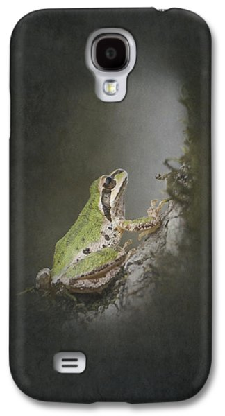 Light And Dark Galaxy S4 Cases - Looking Up Galaxy S4 Case by Angie Vogel