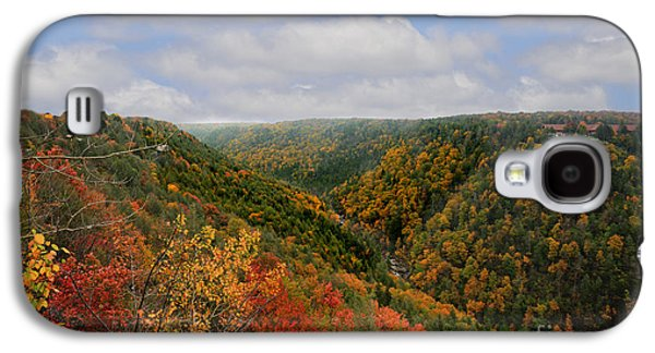 Dan Friend Galaxy S4 Cases - Looking upriver at Blackwater river Gorge in fall from Pendleton Point Galaxy S4 Case by Dan Friend